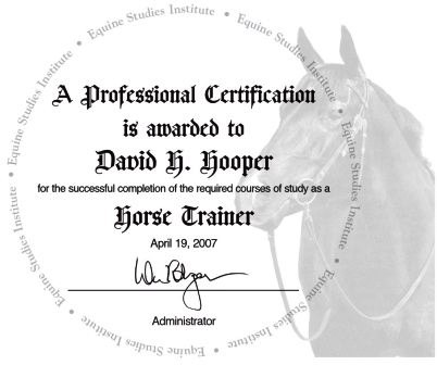 Professional Horse Training Certification